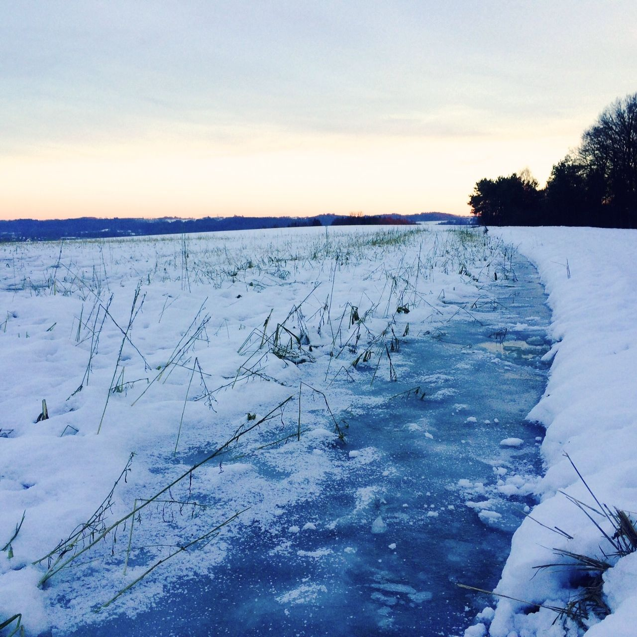 5. Januar 2015: Frost im Ampertal.