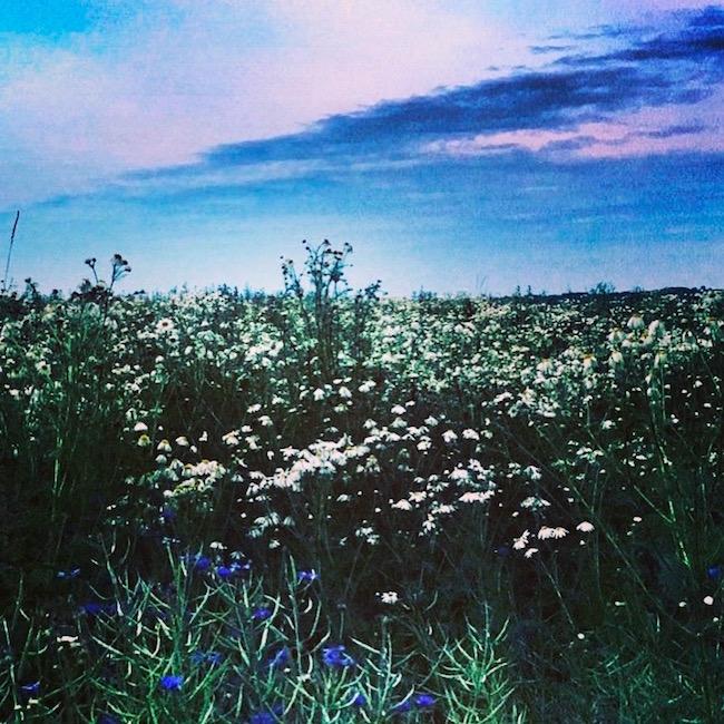 Sommernächte, sie sind licht und lau. Voller Lachen, Musik, Rosé. Wunderschön. Nicht schlafen, immer draußen sein, im Mondlicht. Pure Poesie.