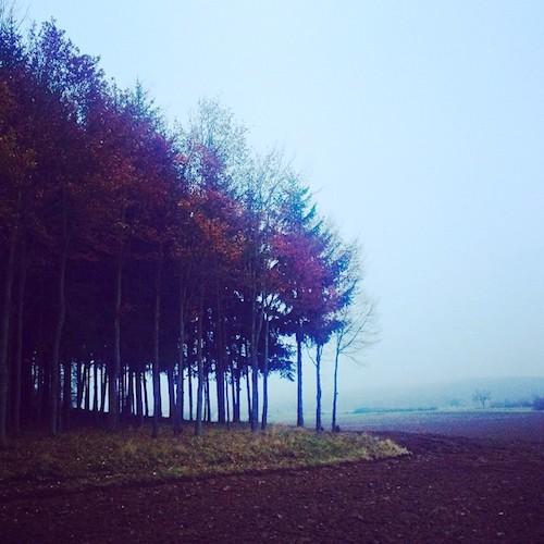 Herbstnebel im Ampertal